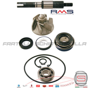 100110190-kit-revisione-pompa-acqua-honda-sh-dylan