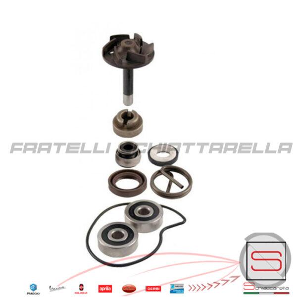 kit-revisione-pompa-acqua-rms-piaggio-beverly-250-rst-04-05-100110220 cif