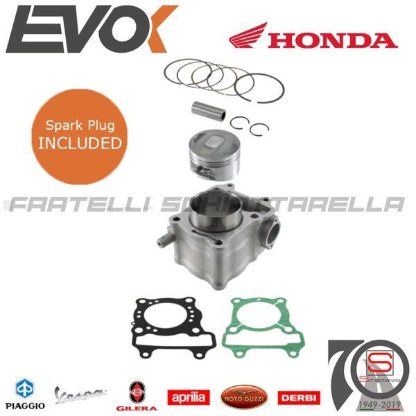 100081010 Gruppo Cilindro Evok Honda Sh 125