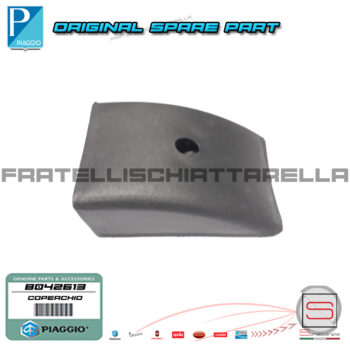 Coperchio Cerniera Porta Anteriore Originale Piaggio Ape Classic 400 B042613