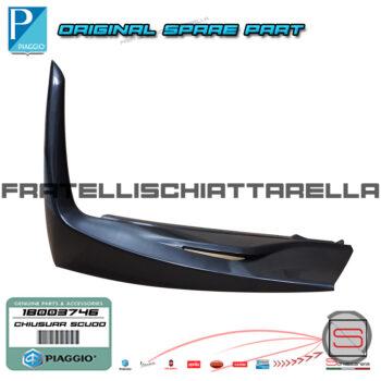 https://www.fratellischiattarella.it/wp-content/uploads/2019/05/Chiusura-Scudo-Anteriore-Sinistro-Originale-Piaggio-Medley-4T-IE-ABS-125-150-1B003746.jpg